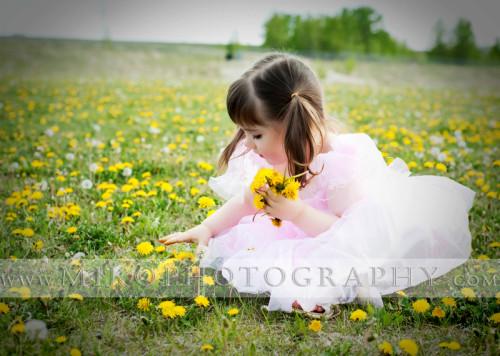 Dandelion-portrait-miko-photography-calgary.j